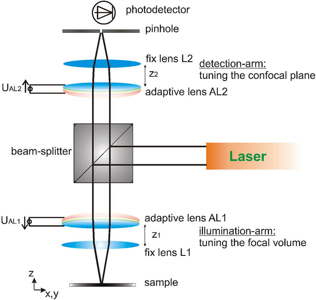 Diagram Of Confocal Laser Scanning Microscopy on Bohr Model Worksheet Answers