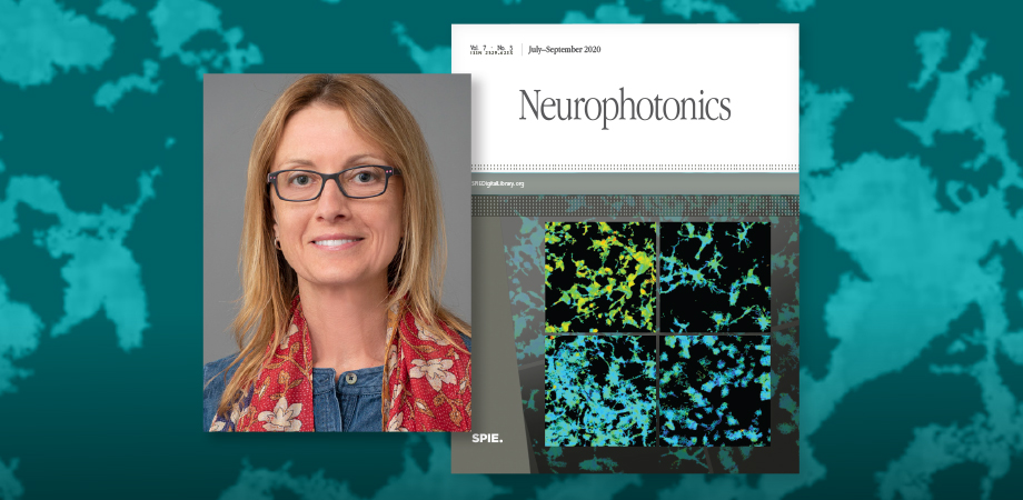 Anna Devor has been appointed as the new editor-in-chief of SPIE journal Neurophotonics.