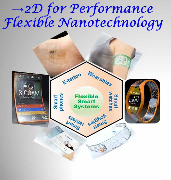 2D for performance flexible nanotechnology