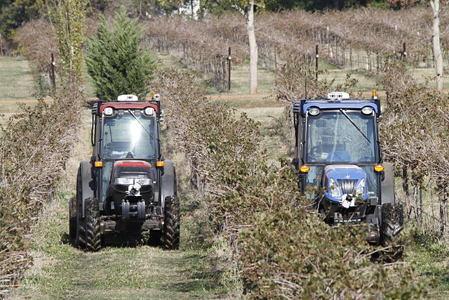 Driverless compact tractors perform fully autonomous spraying tasks at a Texas vineyard