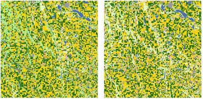 Hyperspectral image showing corn (yellow) and soy (green) distribution in McCook County, Iowa,  for 2014 (left) and 2015 (right).