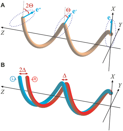 Spin-orbit interaction of light. (a) Evolution of the polarization vector (e