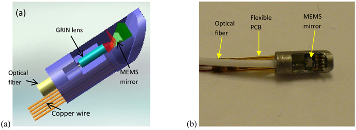 Optical micro-endoscopes for 3D in-vivo imaging