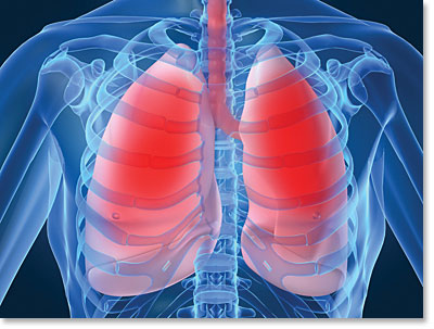SPIE-AAPM-NCI Lung Nodule Classification Challenge